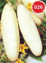 Краставица бяла