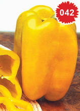 Пипер за пълнене жълт