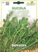 Рукола - Rucola selvatica