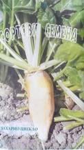 Цвекло Захарно