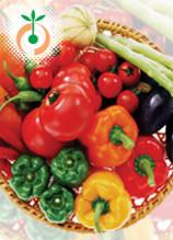 Зеленчукови семена
