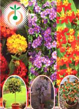 Живи растения