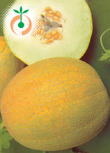Пъпеши - Cucumis melo