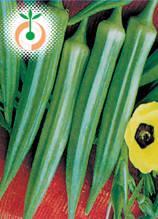 Бамя - Hibiscus esculentus