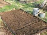 Кои препарати да използвате, за да обеззаразите почвата